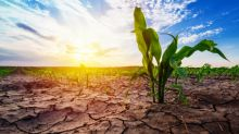 How to profit from Australia's current severe regional drought