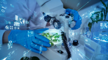 GB Sciences Files Provisional Patent Application to Protect Its Proprietary Drug Discovery Platform