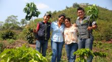Starbucks Commits up to $20 Million to Provide Emergency Relief to Smallholder Farmers Impacted by the Coffee Price Crisis in Central America