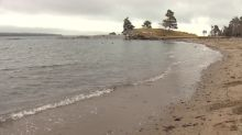 High bacteria levels close Point Pleasant Park beach to swimming