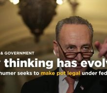 Pot politics: Schumer joins politicians rethinking marijuana