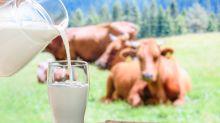 Leche de vaca: ¿el principio del fin de un sector?