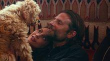 El perro de Bradley Cooper está robando corazones con su participación en Ha nacido una estrella