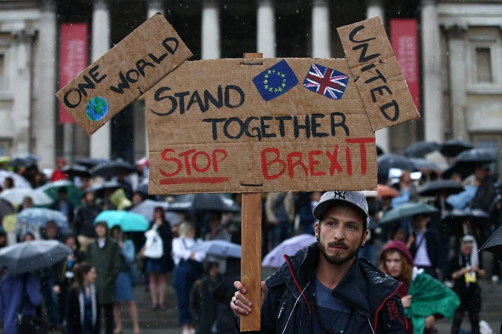 "A demonstrator holds up a placard saying ""Stand together, Stop Brexit"" at an anti-Brexit protest in Trafalgar Square on June 28, 2016 (AFP Photo/Justin Tallis)"