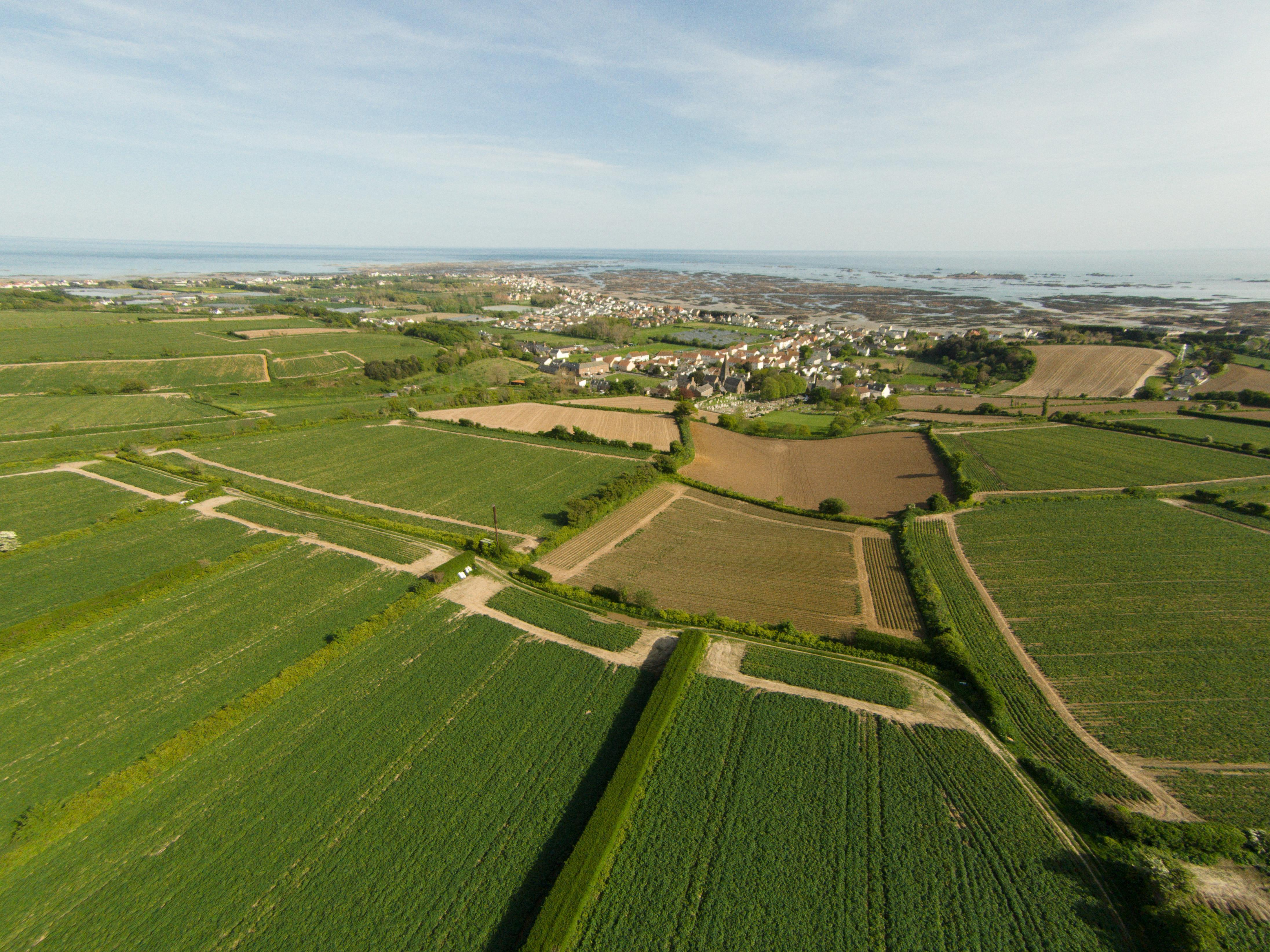 Aerial_view_of_fields_in_St_Clement,_Jersey