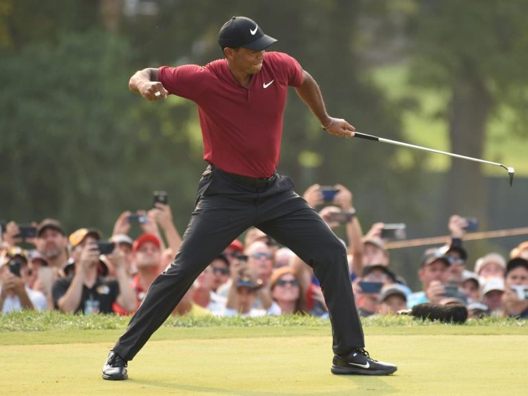 Ryder Cup 2018: Tiger Woods to be replaced as vice-captain with Jim Furyk prepared to pick 'priceless' teammate