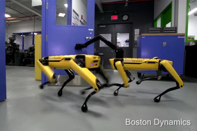Boston Dynamics' robots are the politest 'pets' you'll meet