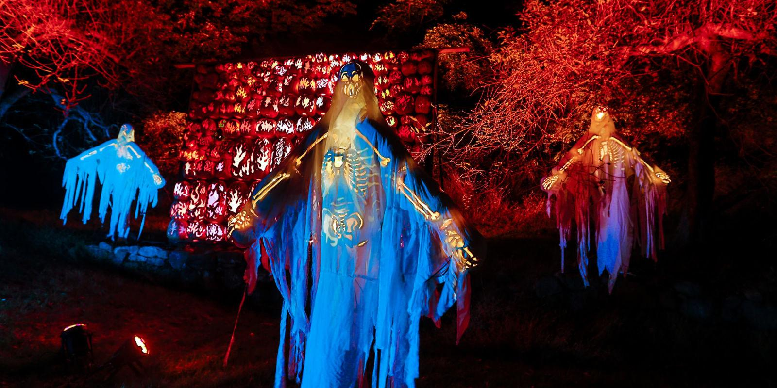 9 Illuminating Jack-o-Lantern Festivals to Visit This October