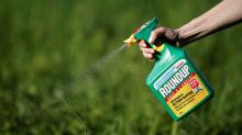 U.S. judge limits evidence in trial over Roundup cancer claims