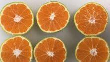 Tesco selling green oranges in bid to cut waste