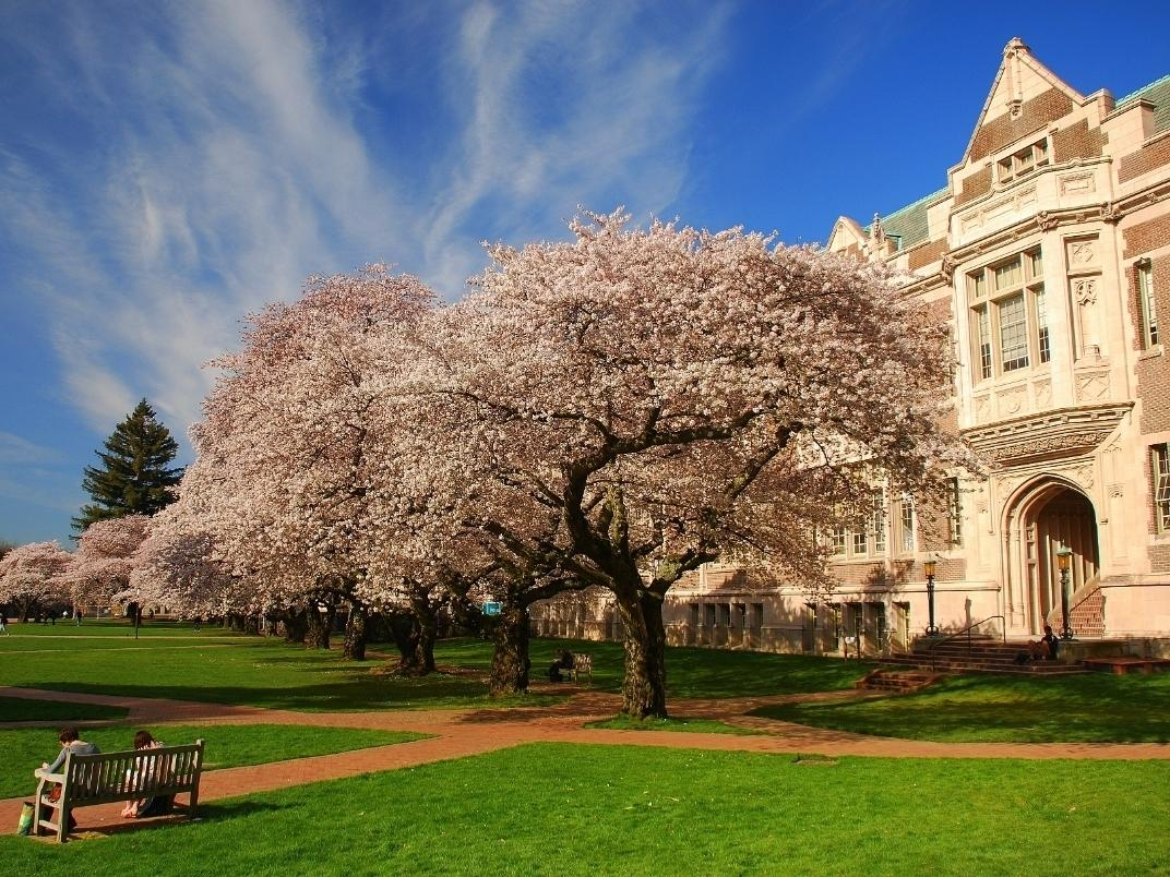 The University of Washington is again adjusting plans for the fall quarter amid growing coronavirus activity in the region.