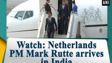 Watch: Netherlands PM Mark Rutte arrives in India