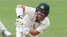 David Warner: Australia opener prepared for long-term pain from groin injury