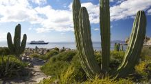 A cruise during the pandemic? These Baja, Mexico, ships have fewer than 100 passengers