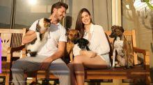 Camila Queiroz e Klebber Toledo fazem festa de aniversário para cachorrinha