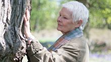 Judi Dench Planted an Entire Forest to Honor Her Deceased Loved Ones