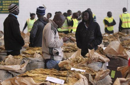 Farmers wait to sell their crop during the last day of the selling season at Tobacco Sales Floor (TSF) in Harare
