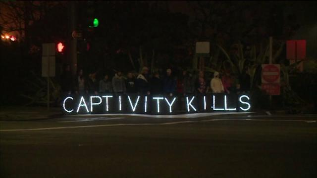 Protests Grow Outside Seaworld