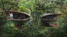 Coming in 2023: Banyan Tree's first Singapore resort will be eco-friendly Mandai development