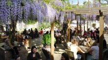 London's best pub gardens
