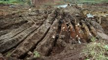 Study finds dangerous mercury levels in Amazon fish