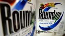 Judge upholds Monsanto weed killer cancer verdict but slashes damages to groundsman