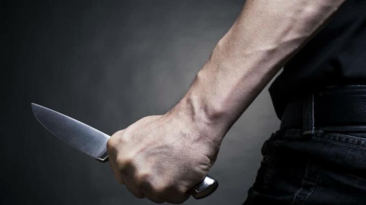 Bengaluru Shocker: Man Snatches Butcher's Knife From Mutton Shop, Stabs 6 People, 1 Die