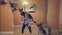 Cuteness overload floods Instagram feeds with 'squat your dog challenge'