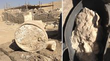 World's oldest cheese found - and could kill anyone if they try to eat it