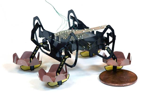 Harvard's tiny robot can swim and walk underwater