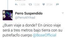 Las vomitivas reacciones a la muerte de Bimba Bosé en Twitter
