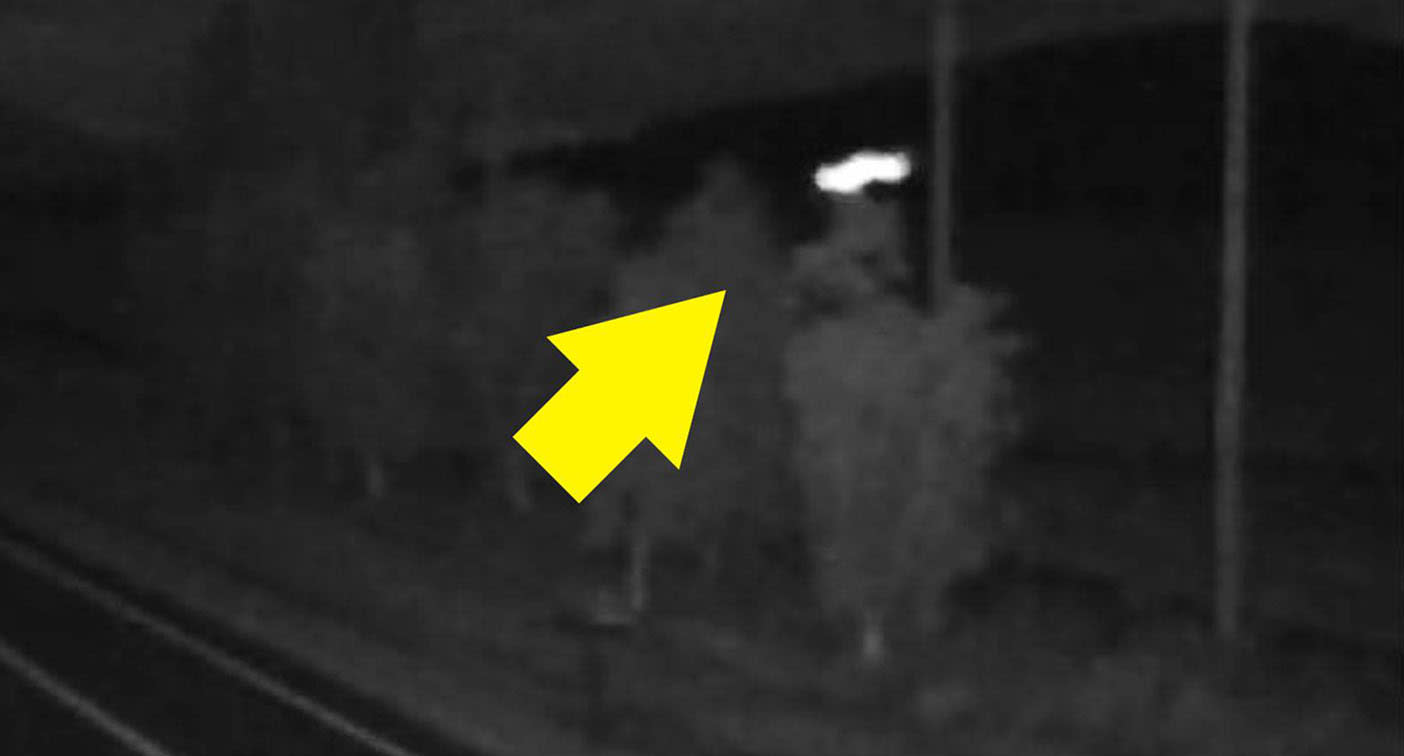 Mysterious shape caught on traffic camera sparks wild theories