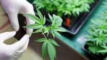 Canopy Growth Stock Is the Best Coronavirus Cannabis Play