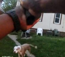 Bodycam Footage Released Of Moment Cop Shoots Family's 2 Dogs