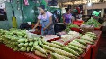 México destina la producción de autoconsumo a diversas funciones