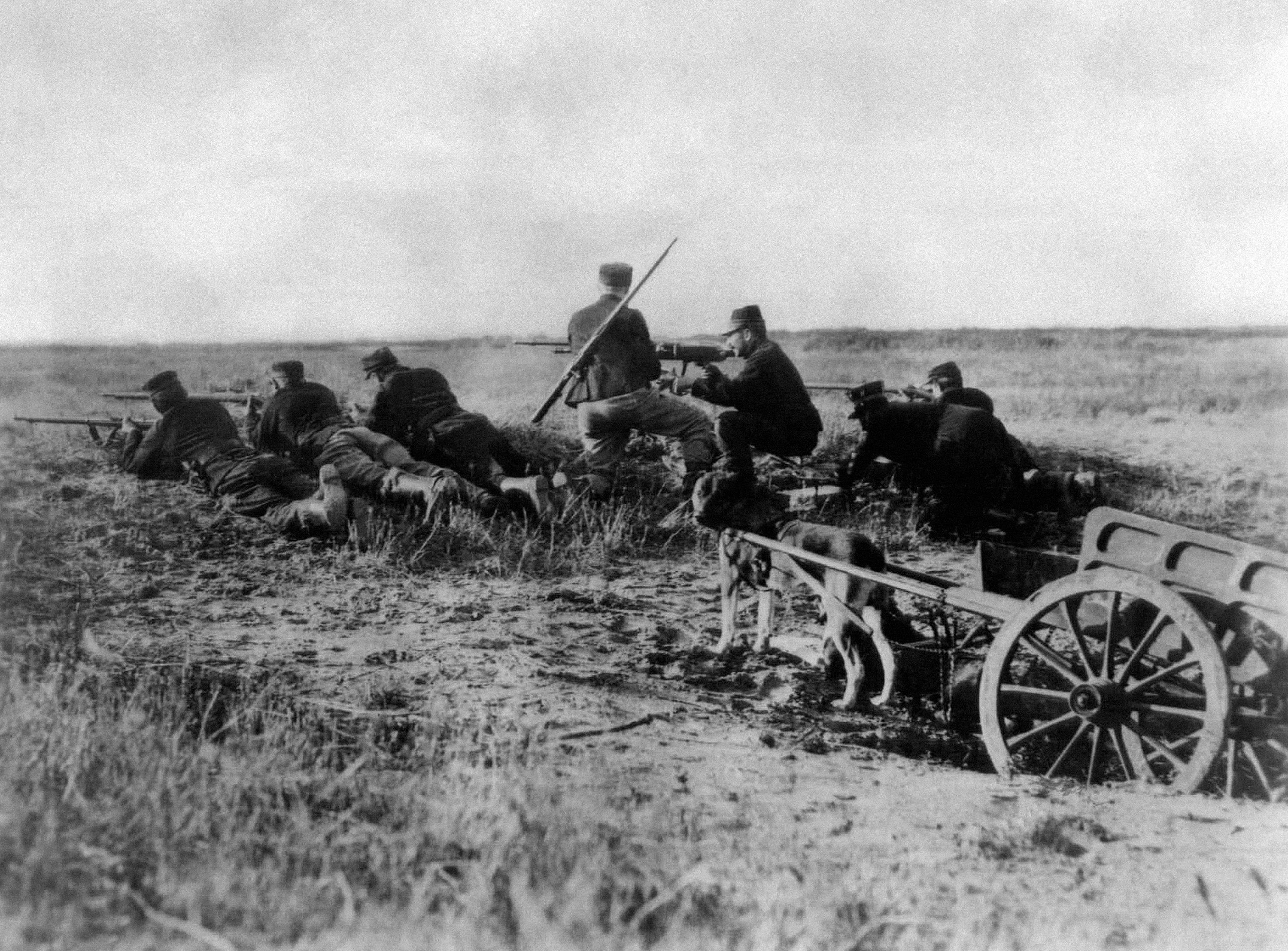 FILE - A Belgian machine gun detachment aims near Haelen, with a dog pulling a cart in August 1914. The Belgians used dogs to draw these guns and ammunitions. They were messengers, spies, sentinels and the heavy haulers of World War I, carrying supplies, munitions and food and leading cavalry charges. The horses, mules, dogs and pigeons were a vital part of the Allied war machine, saving countless lives _ and dying by the millions. (AP Photo, File)