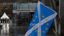 Half of Scots don't want independence vote before Brexit - YouGov poll
