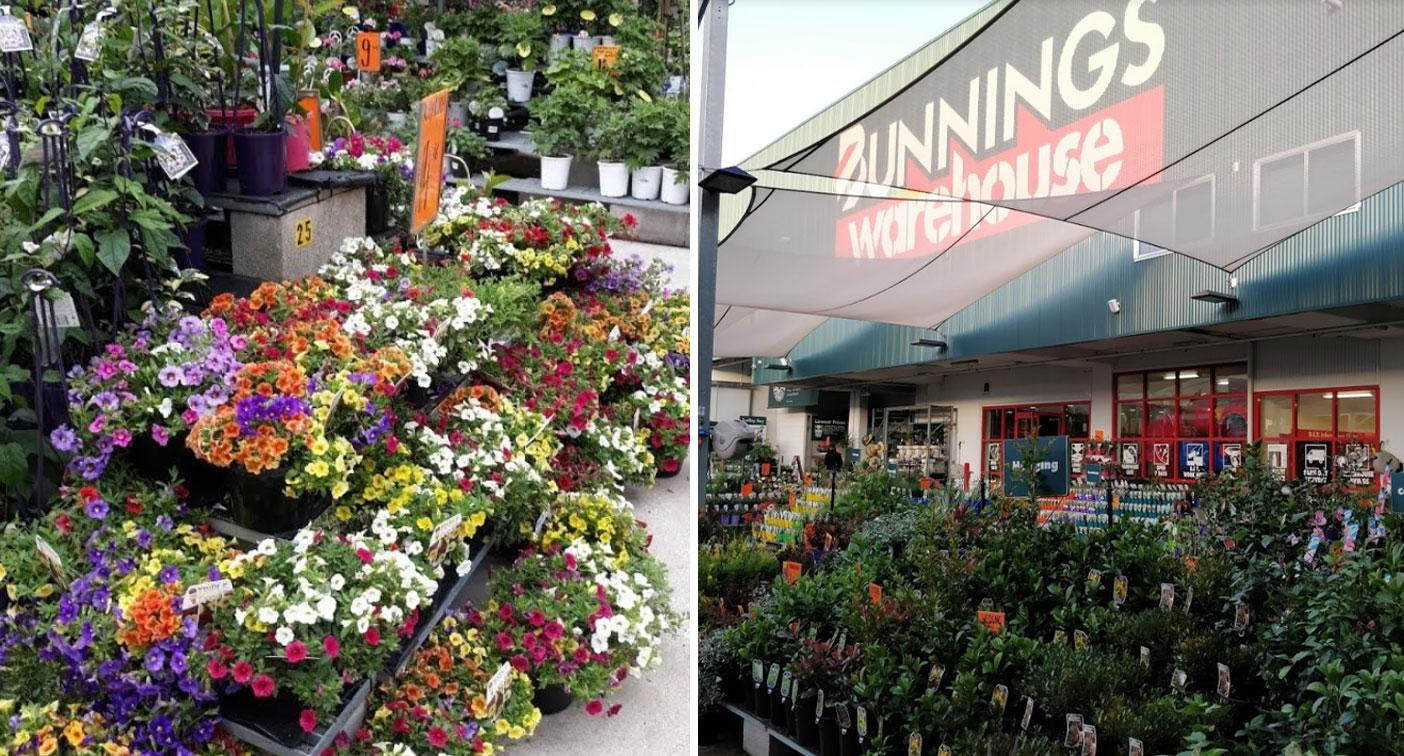 Woman's amazing discovery about Bunnings policy on plants floors people online