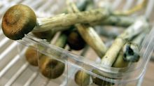 Could magic mushrooms be the next drug legalized in Canada?