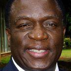 Mnangagwa: Zimbabwe's 'Crocodile' to snap up the top job