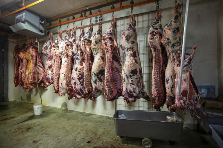 Idaho has seen an explosion of coronavirus cases, including at meat processing plants