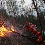 Forest fire kills 19 in China's Sichuan province: state media