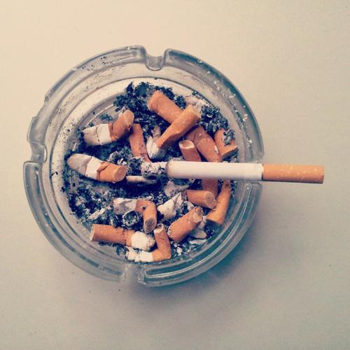 research proposal on effects of smoking in students Smoking habits and attitudes towards smoking among university students in  aware of the adverse effects of smoking  research was part of a thesis .