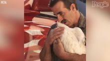 Truck driver saves chicken destined for slaughterhouse