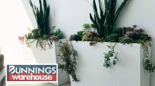 DIY Bunnings planter box saves shopper thousands