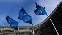 European Parliament Has No Business Telling India What to and What Not to Do on CAA, Kashmir