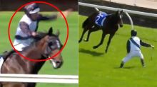 Jockey tries to tackle horse in wild Melbourne Cup day mishap