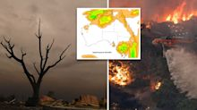 'Wettest two days in months': Bushfire victims warned of floods
