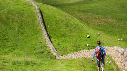 Hadrian's Wall nighthawkers 'stealing knowledge' from site, Historic England warns