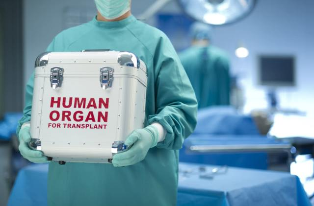 Nanoparticles fool your body into allowing organ transplants